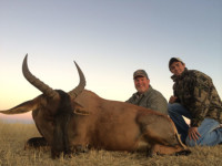 Hunting Experience at Nahla Safaris Photo 17